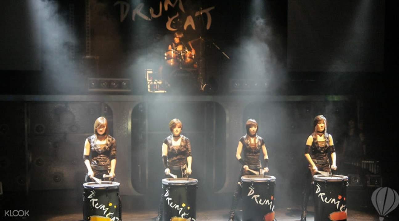 Drum Cat Drumming Performance