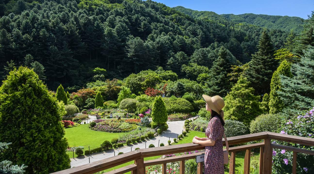 Garden of Morning Calm View in Gyeonggi-do