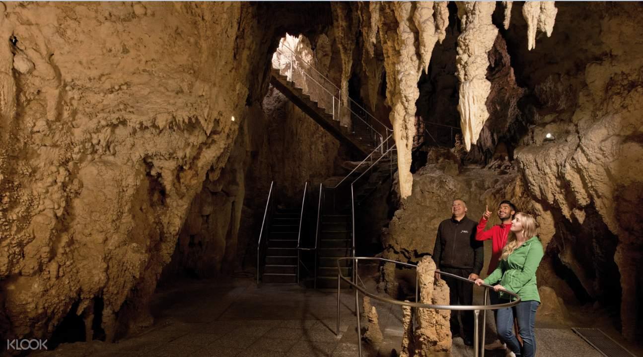 Waitomo Glowworm Caves stalactites