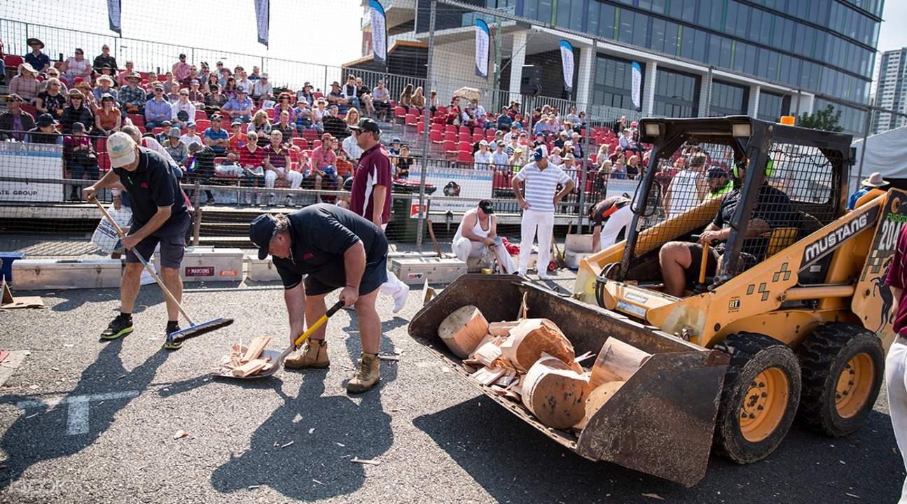 ekka woodchopping competition