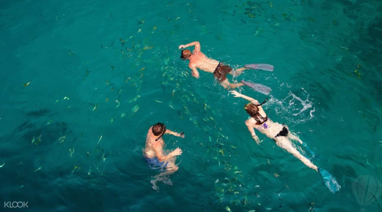 普吉斯米蘭群島一天浮潛