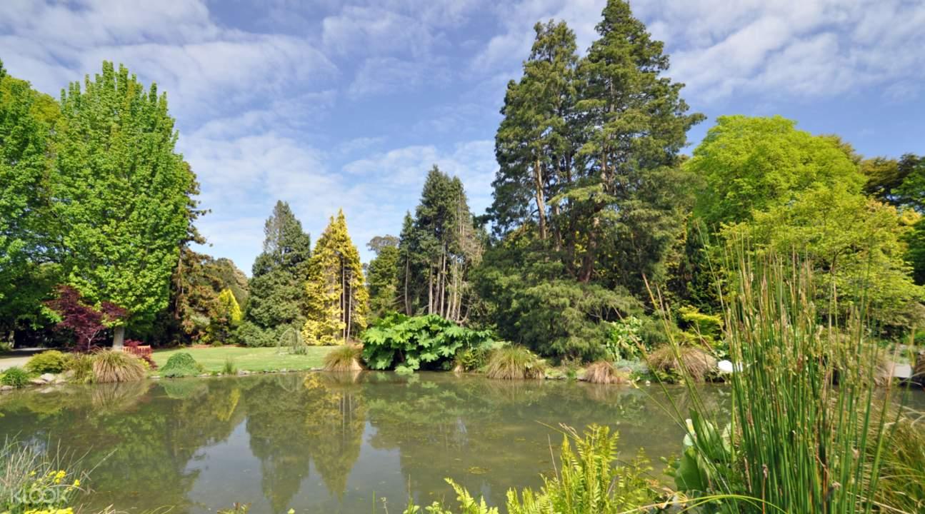 Christchurch Botanic Gardens Flowers