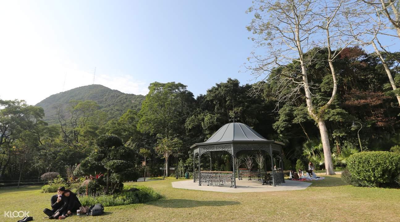 香港徒步,港島徑,太平山徒步,盧吉道,俯瞰維多利亞港,香港太平山徒步,港島徑徒步,香港經典徒步路線