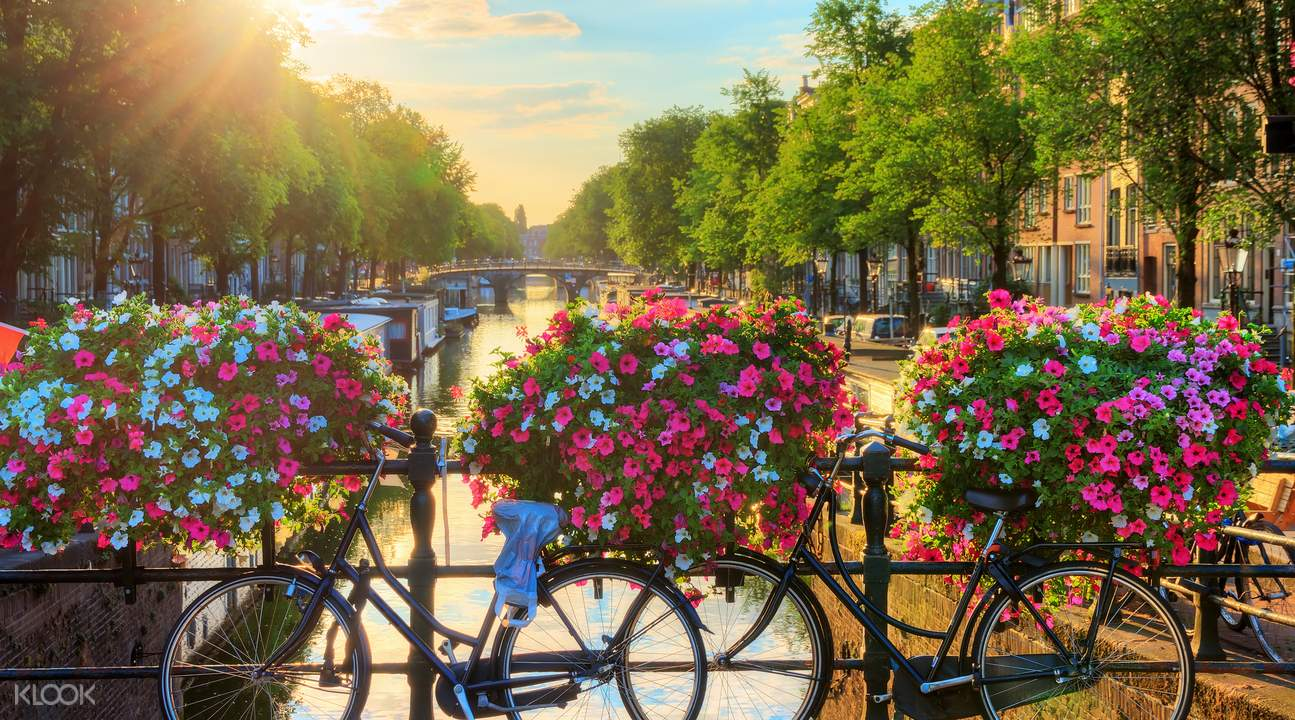 amsterdam 100 highlights cruise tour