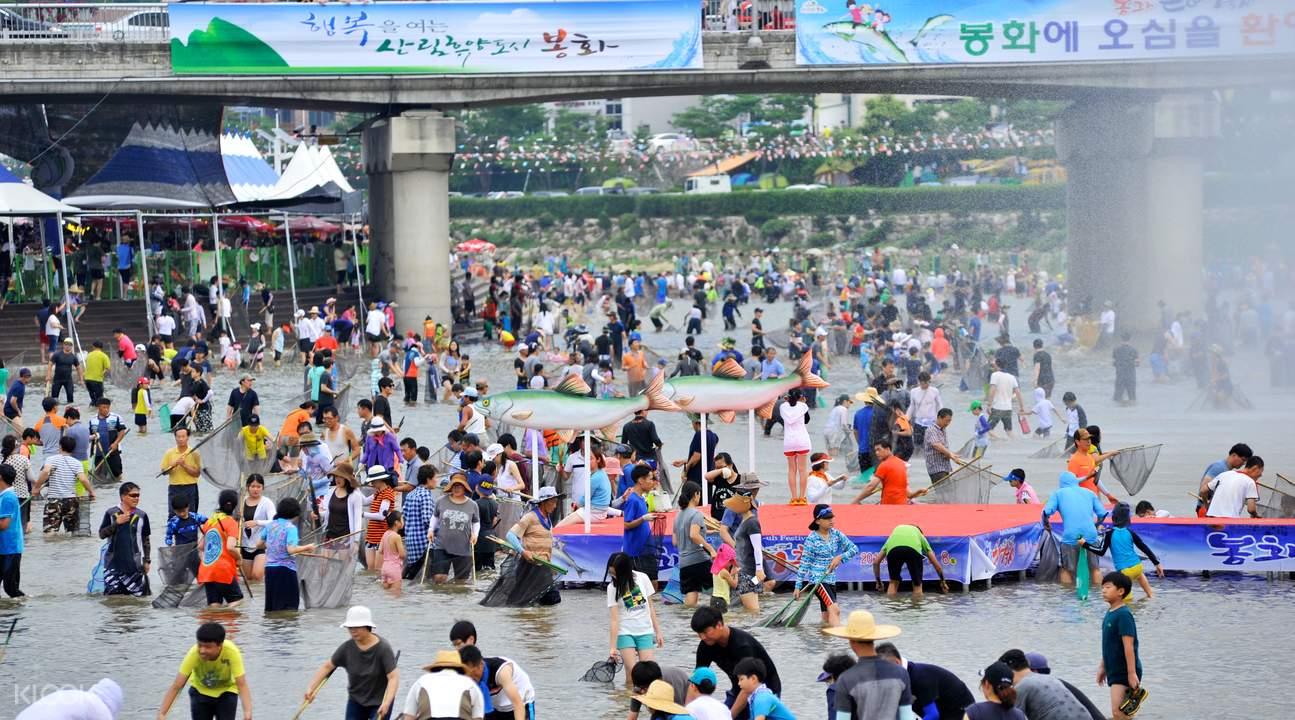bonghwa eun-uh sweet fish festival ticket