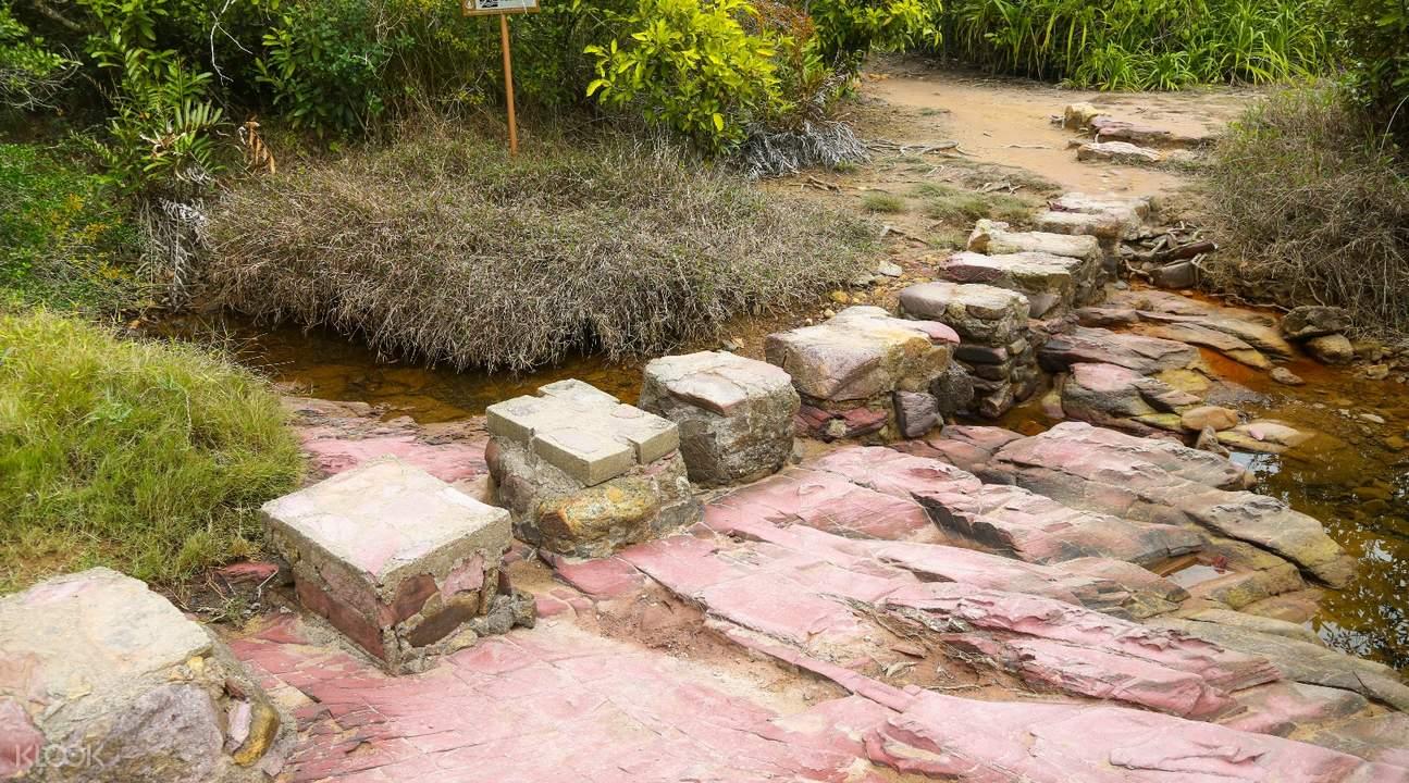 荔枝窝徒步地质岩石