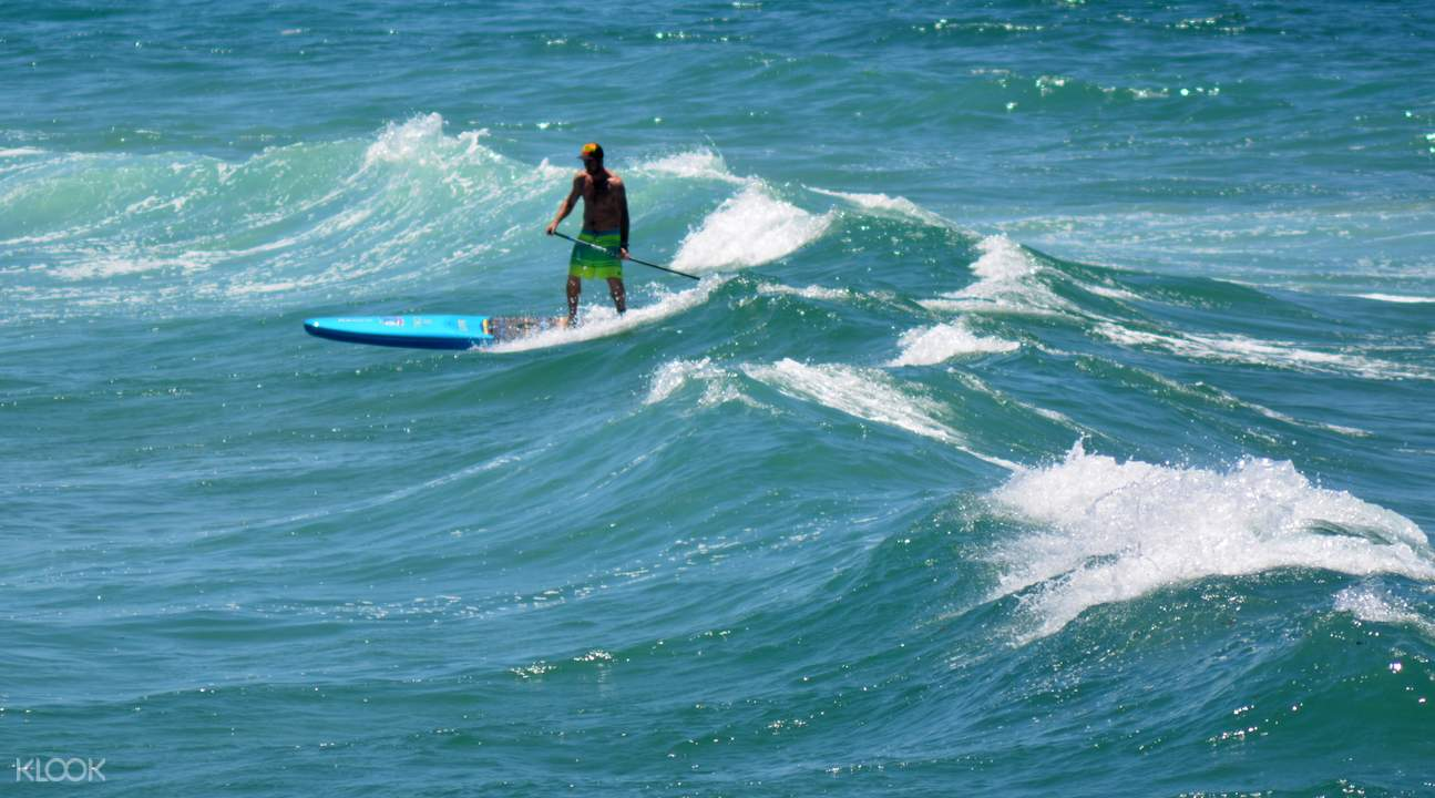Stand Up Paddleboard Gold Coast
