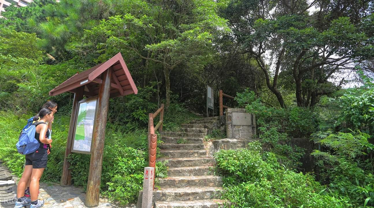 Violet Hills Hong Kong