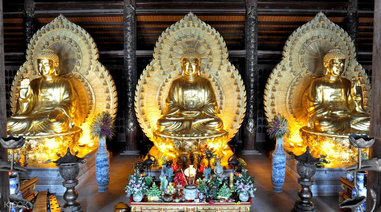 Buddha Statues at Bai Dinh and Trang An Day Tour by Bus from Hanoi