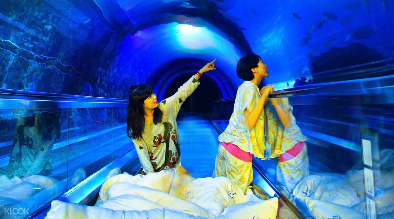 kenting aquarium sleepover