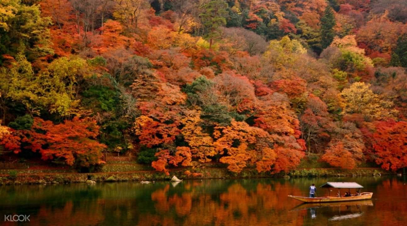 日本關西楓葉
