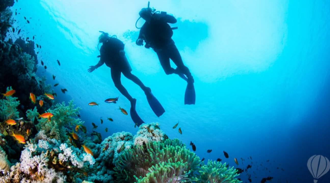 Trou aux Biches Mauritius scuba diving