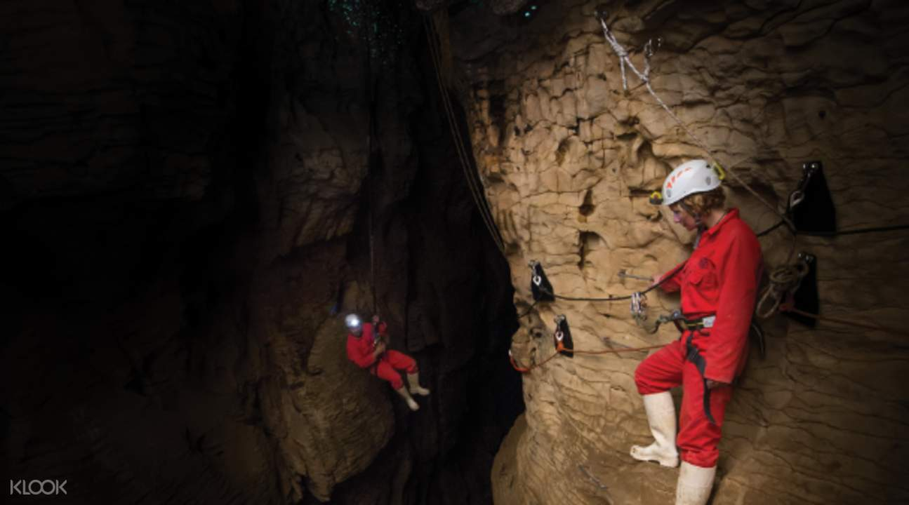 spider walk ruakuri cave dry tour