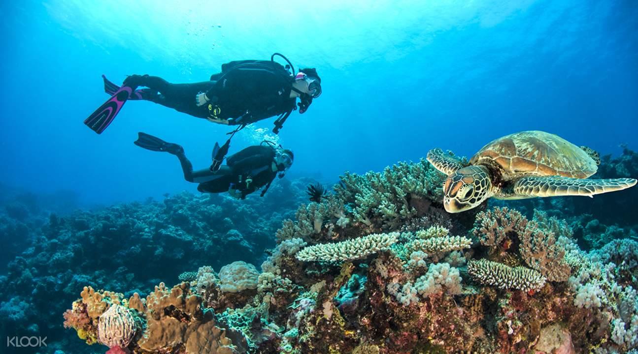 大堡礁PADI潜水认证