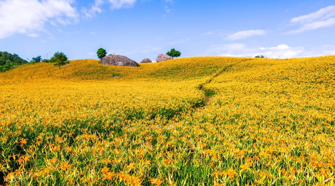花莲赤柯山
