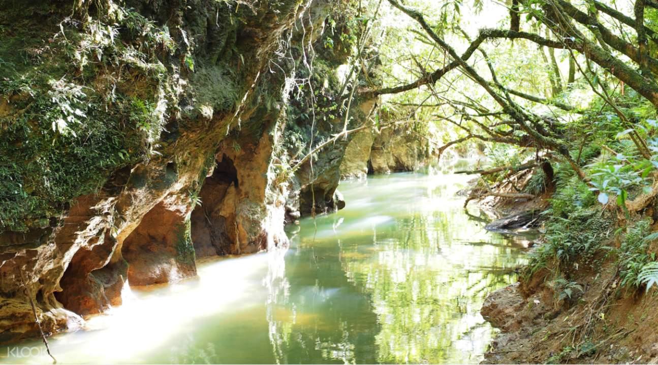 懷托莫洞穴