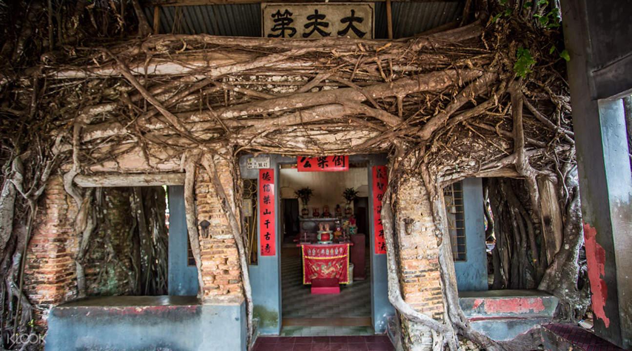 Sengarang banyan tree temple
