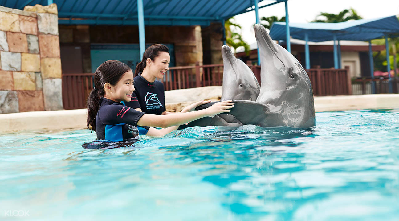 新加坡海豚園