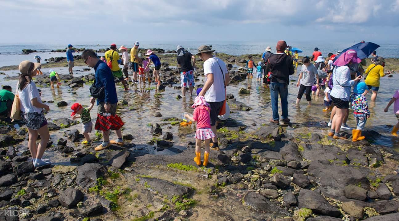 澎湖海上牧场