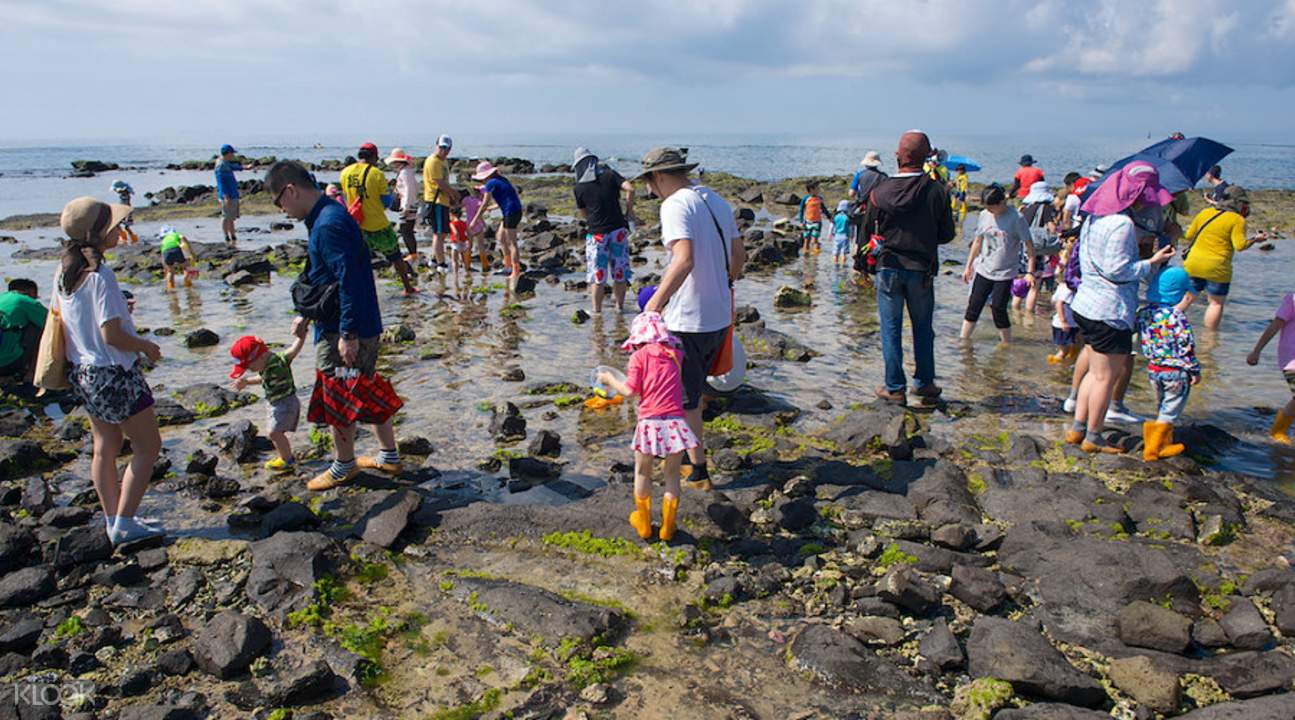 penghu intertidal zone