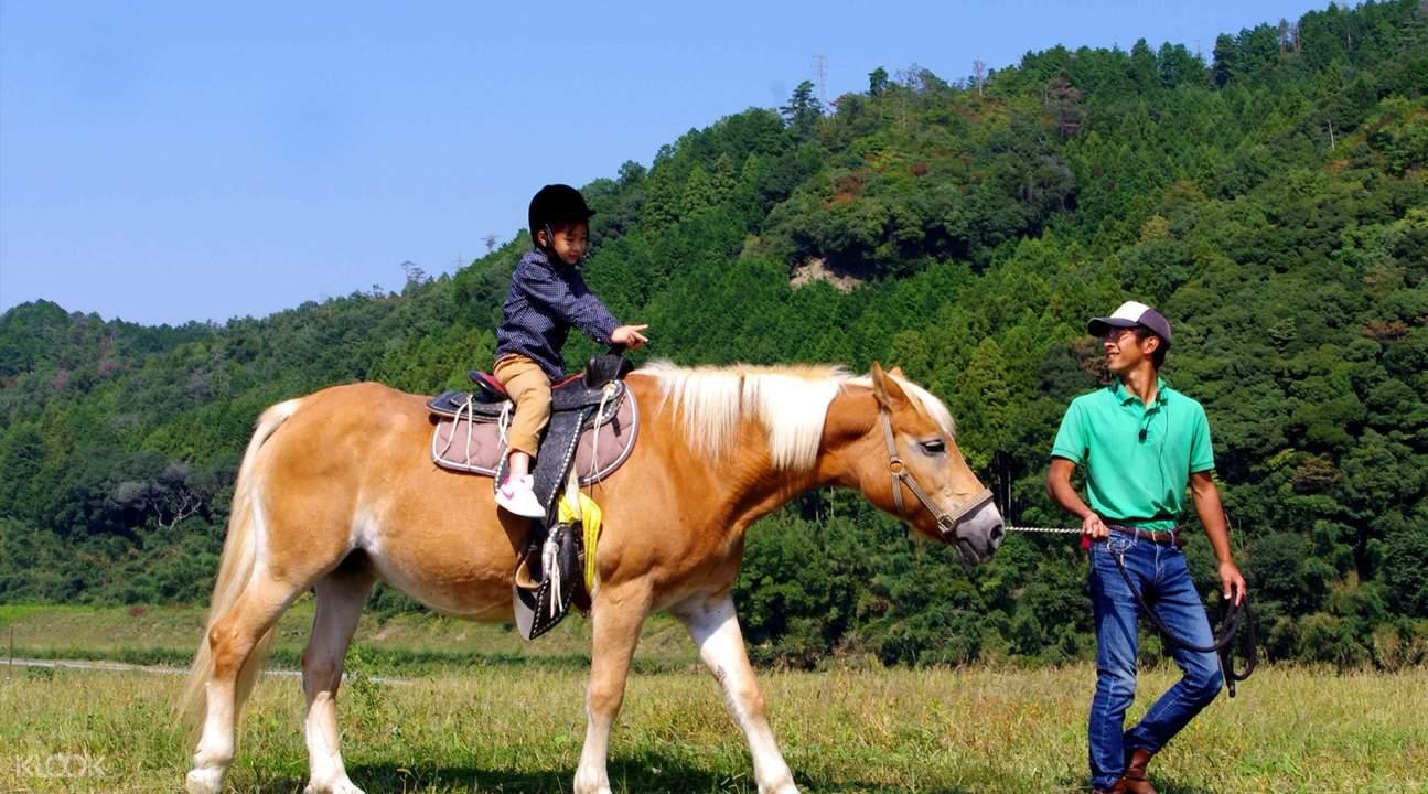嵯峨野觀光馬車遊覽