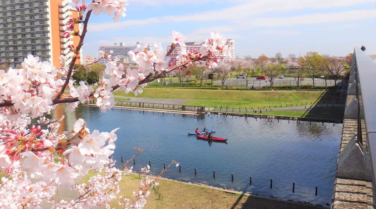 東京水上皮划艇體驗
