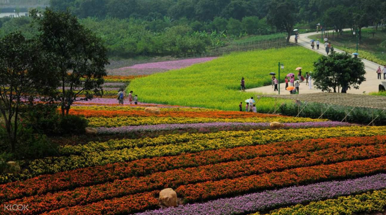 wetland parks in guangzhou