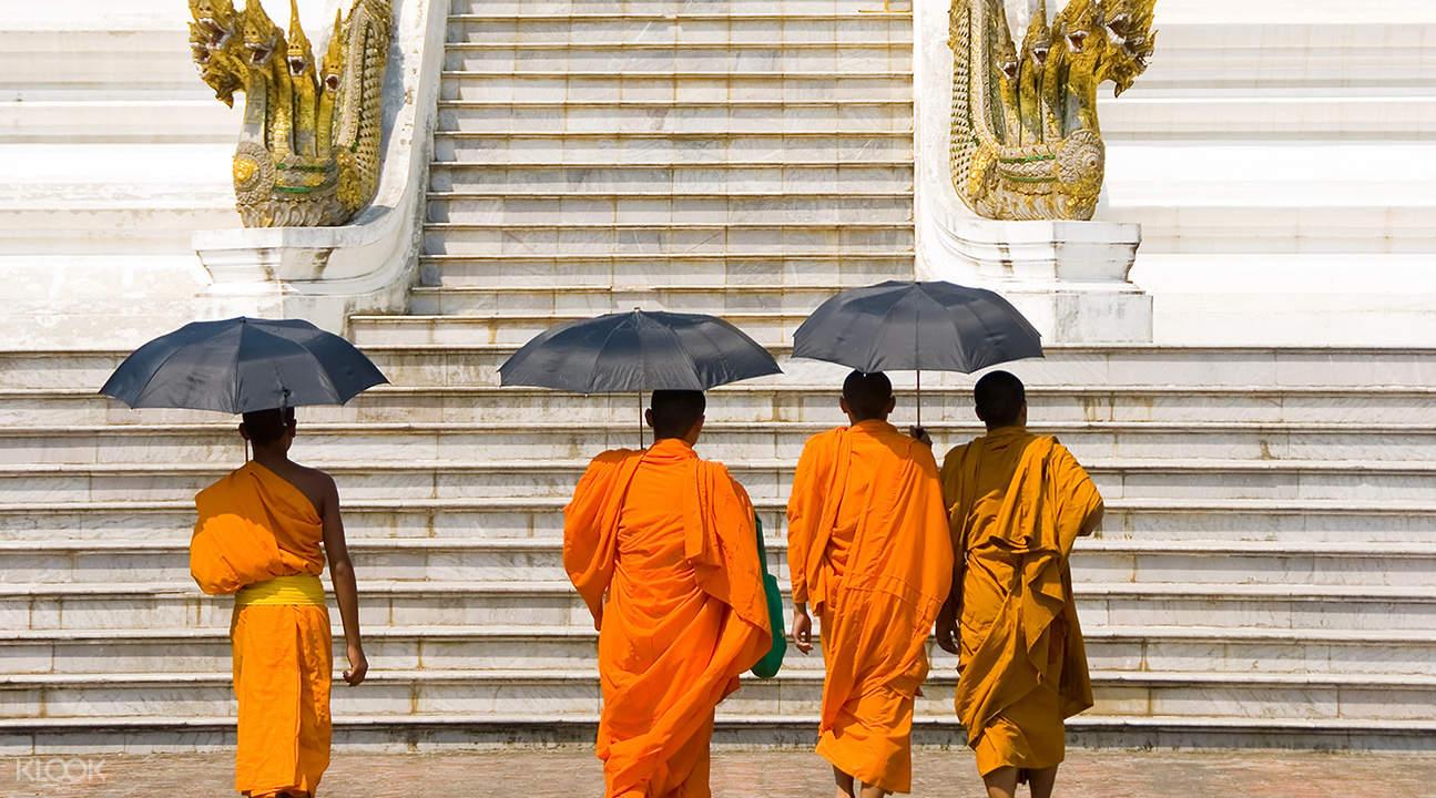 Luang prabang half day city tour and pak ou caves