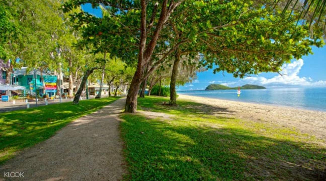 Cairns Highlights Half Day Tours
