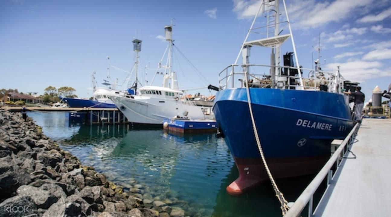 port lincoln seafood tour