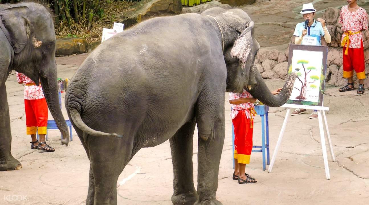 Safari World Elephant Painting