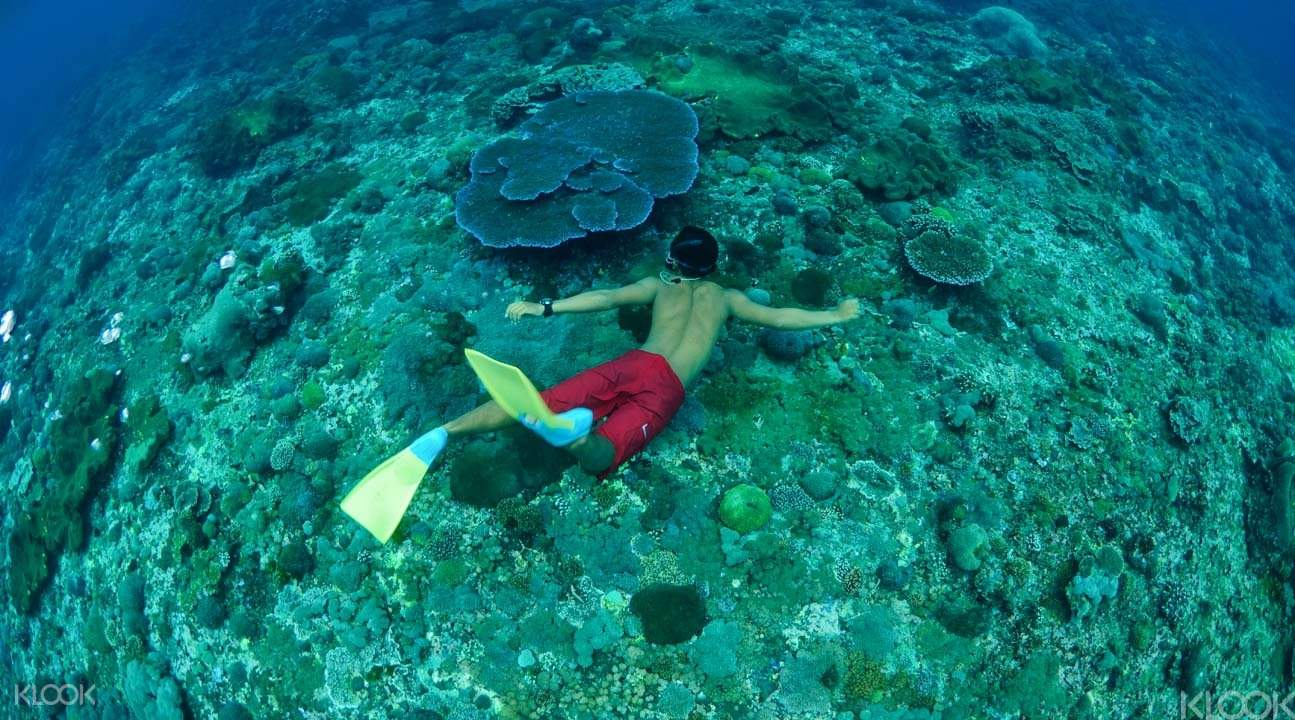 熱帶三島環遊2