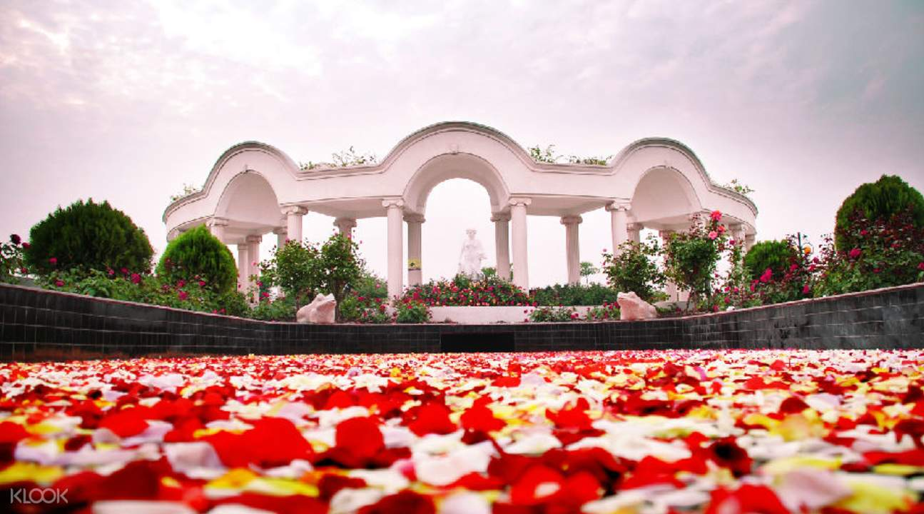 rose world admission in guangzhou