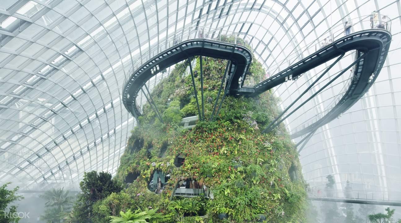 雲霧林中,世界最高的室內瀑布
