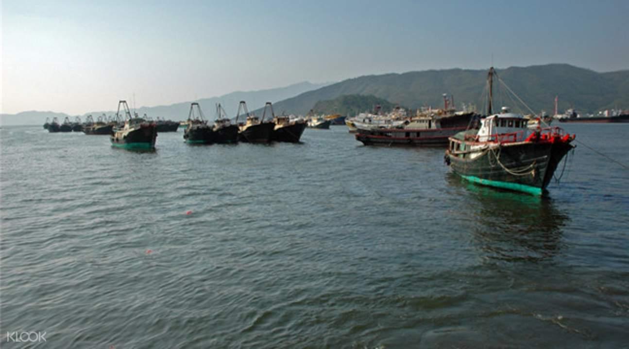 巽寮灣出海遊船
