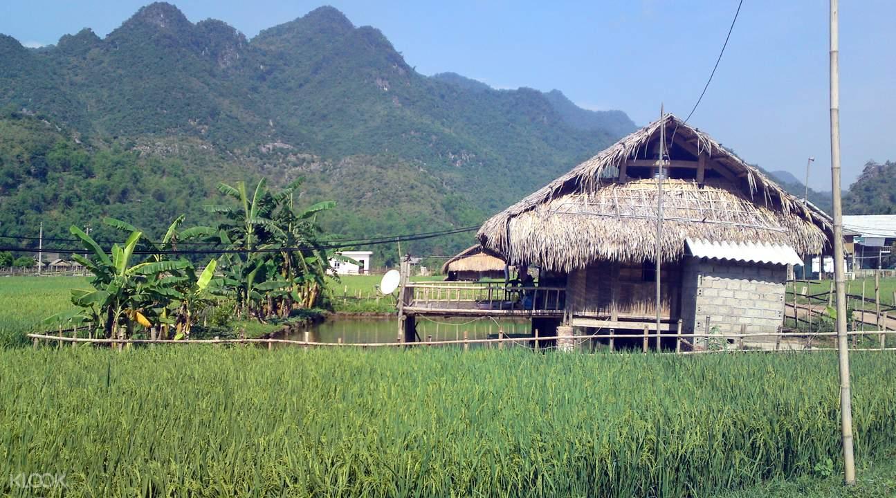 mai chau houses