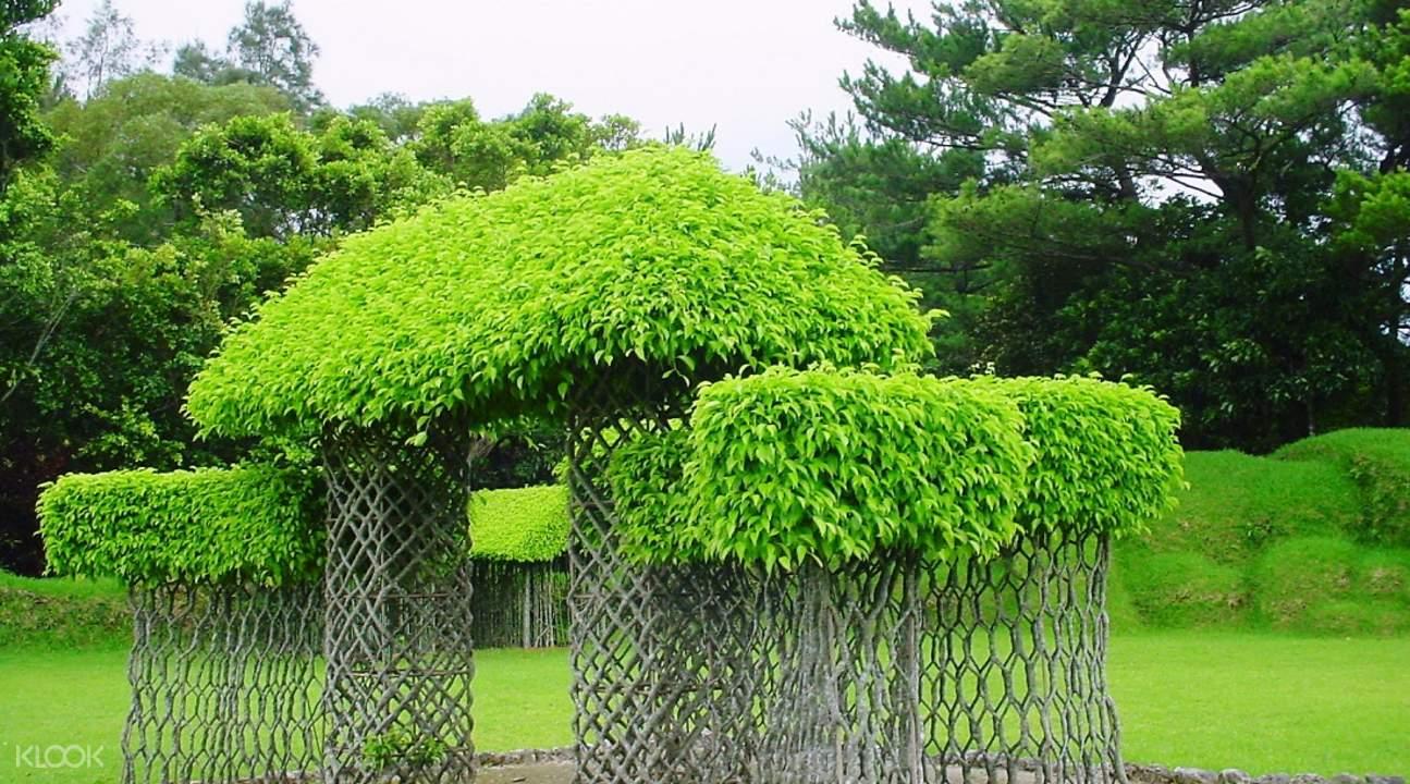 Bios Hill garden