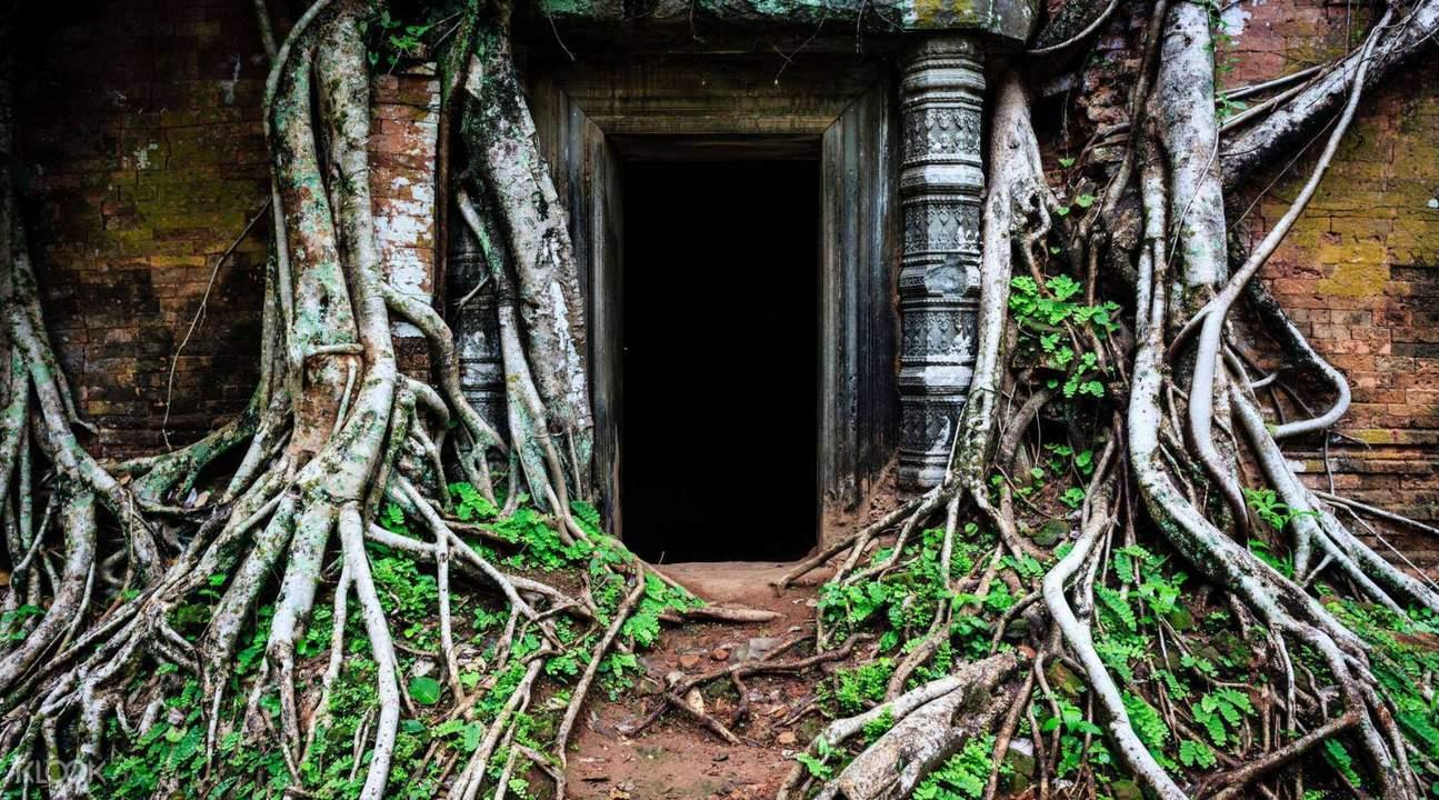 柬埔寨 暹粒 吴哥窟崩密列Tuk-Tuk嘟嘟车一日游