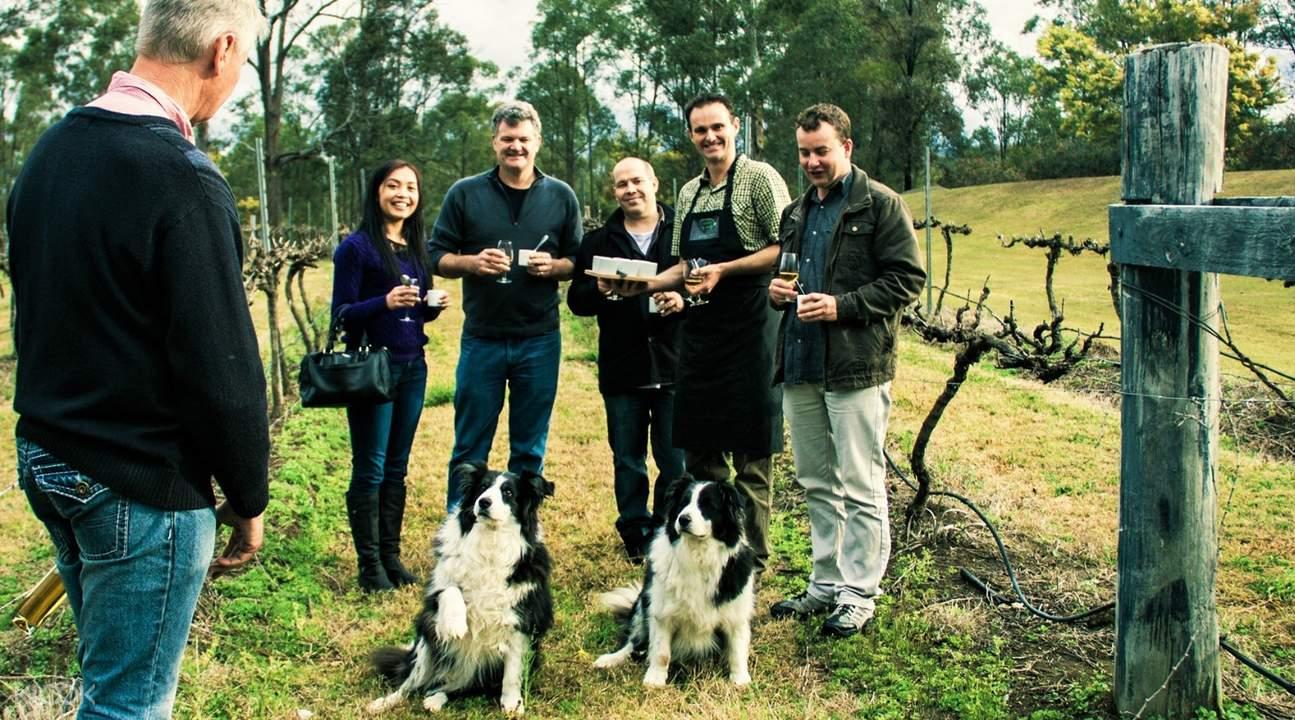 vineyard tour hunter valley