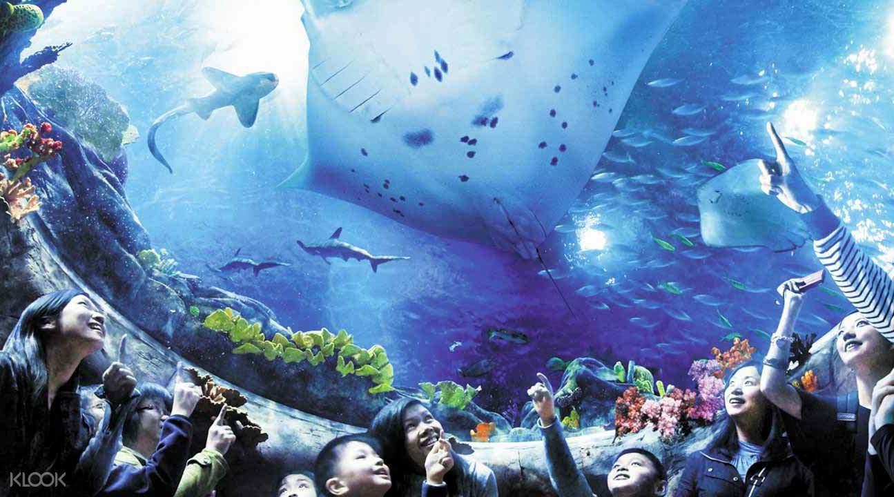 香港海洋公園門票