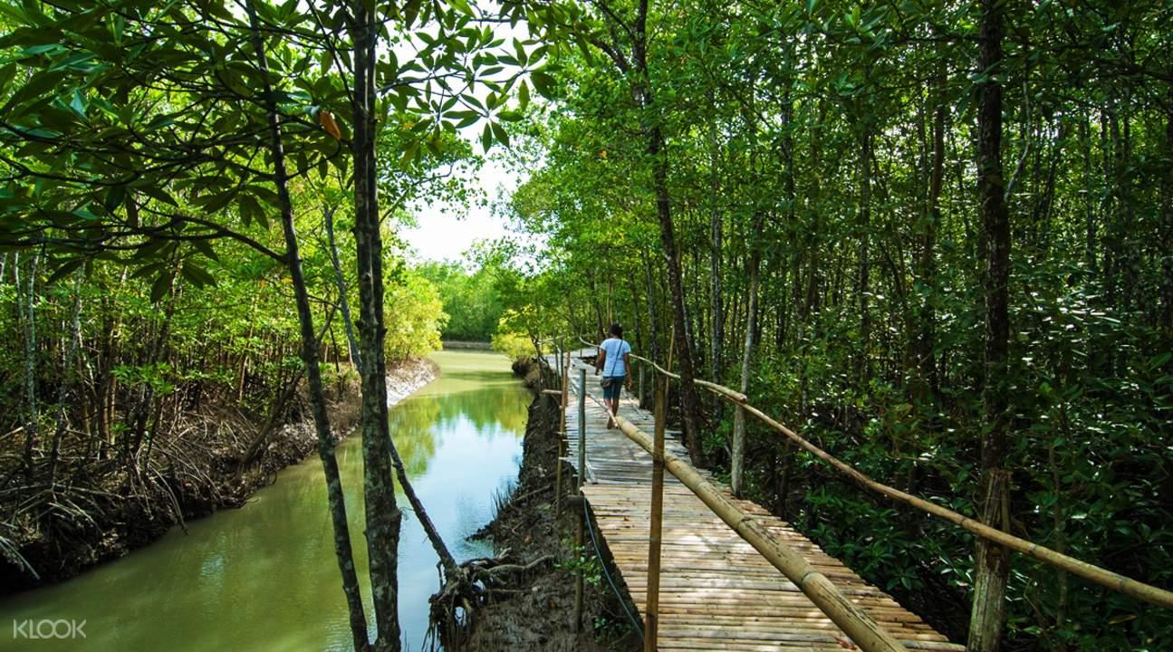 长滩岛生态园