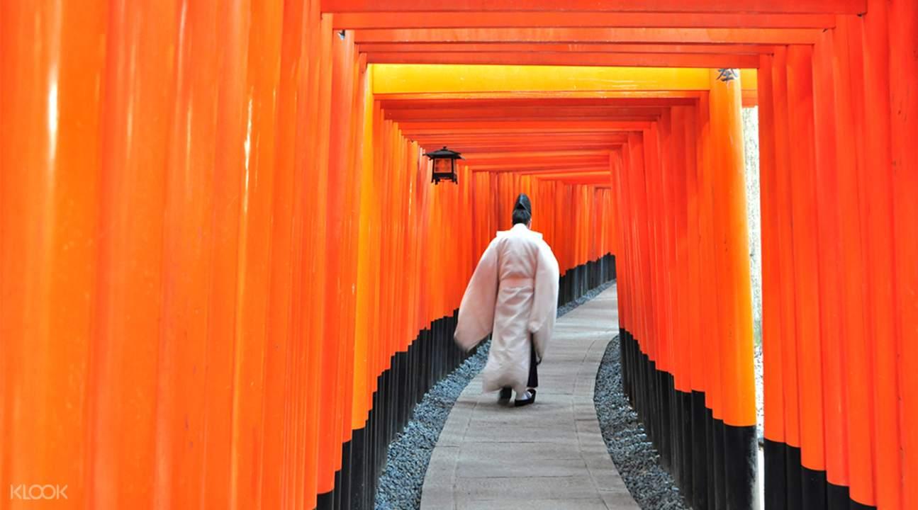 Fushimi Inari Temple Kyoto, torri gates kyoto