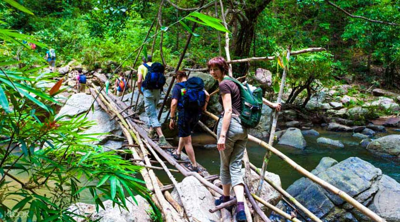 chiang mai jungle trek