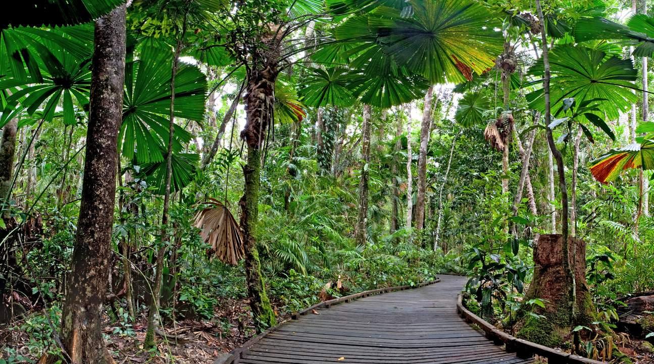 丹翠熱帶雨林+苦難角一日遊