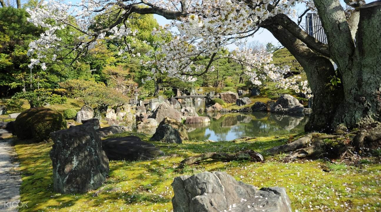 natural landscapes in ninomaru palace garden
