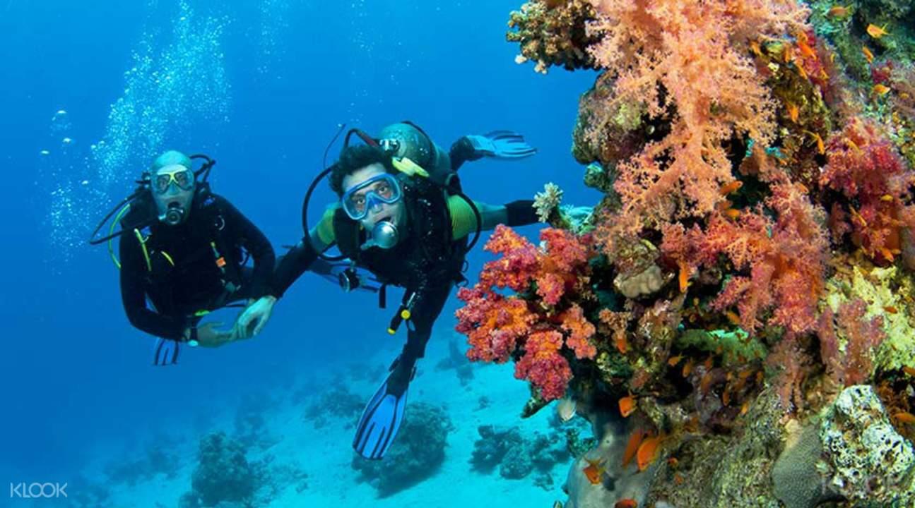 Scuba diving raya island