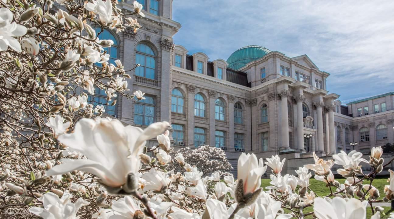 纽约植物园花卉