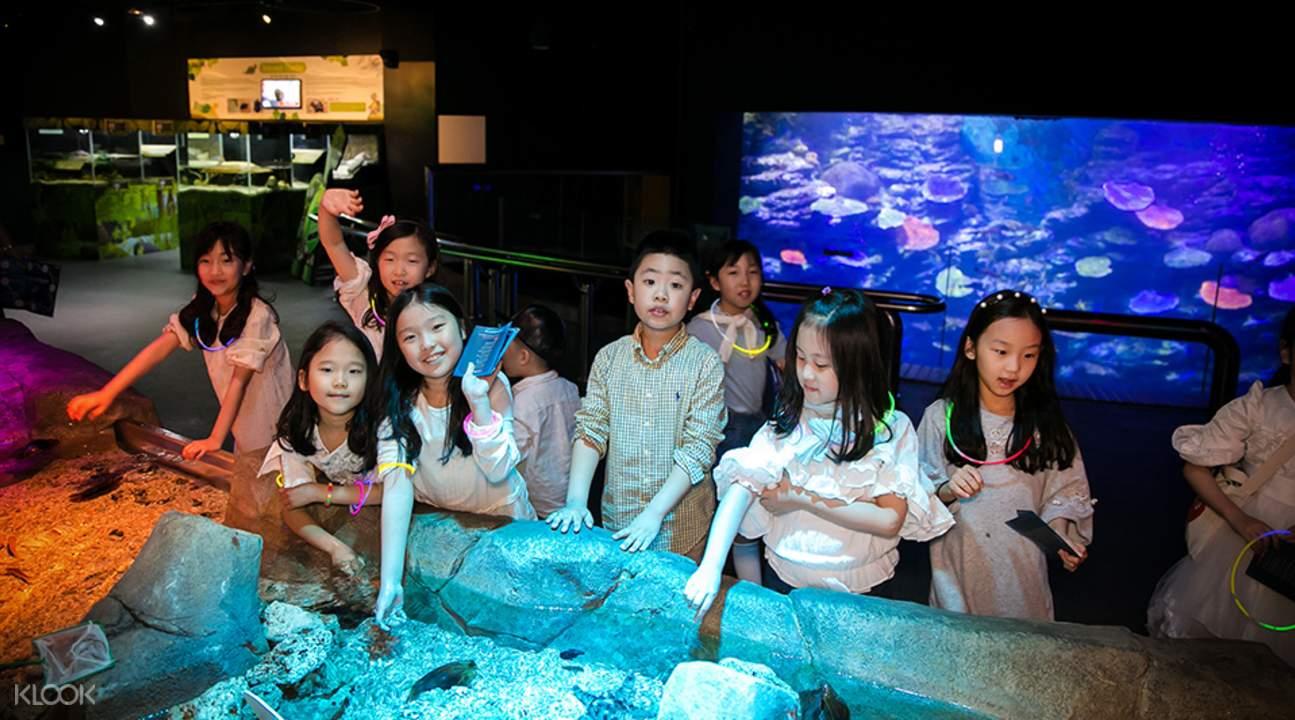 釜山水族馆 sealife