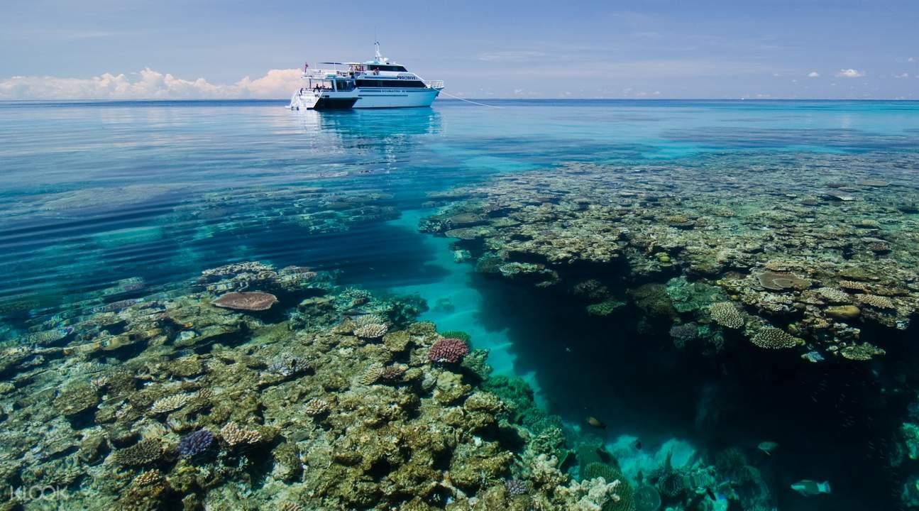 大堡礁PADI潜水认证四日课程