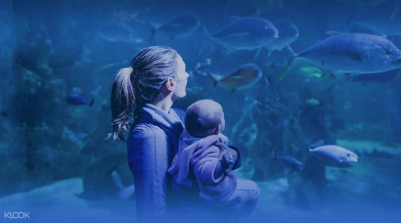 sydney sea life aquarium tickets cheap